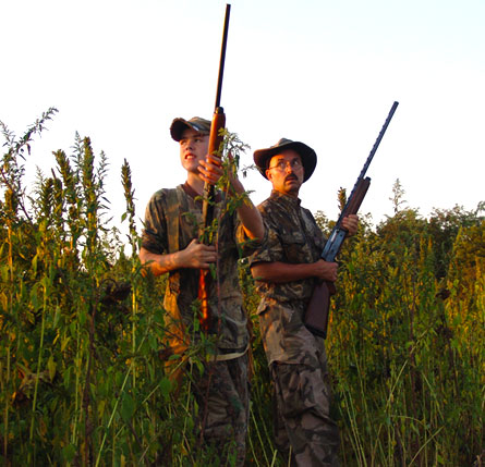 Dove season outlook promising for Sept. 1 opener