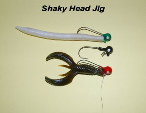 Fishing the Shaky Head Jig