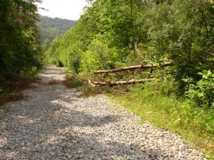 Rail to Trail project considered in east Ky.