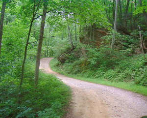 The five mile road into the authors' camp on Cave Run Lake. (Photo by Chris Erwin.)