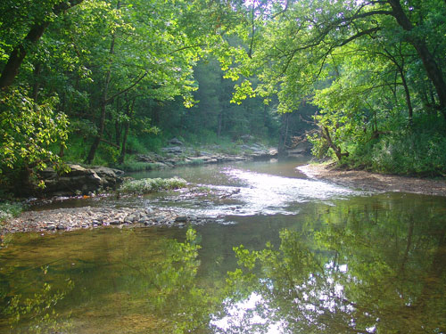 Blue Water Trails –  Little South Fork of Cumberland River