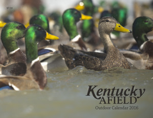 The Kentucky Afield Outdoor Calendar is an invaluable and inexpensive gift for the hunter or angler on your list. This unique calendar has hunting season dates, outdoor tips, nature notes and award winning photography that grace its pages. A gift license or permit from the Kentucky Department of Fish and Wildlife Resources also makes an appreciated present for any hunter or angler.