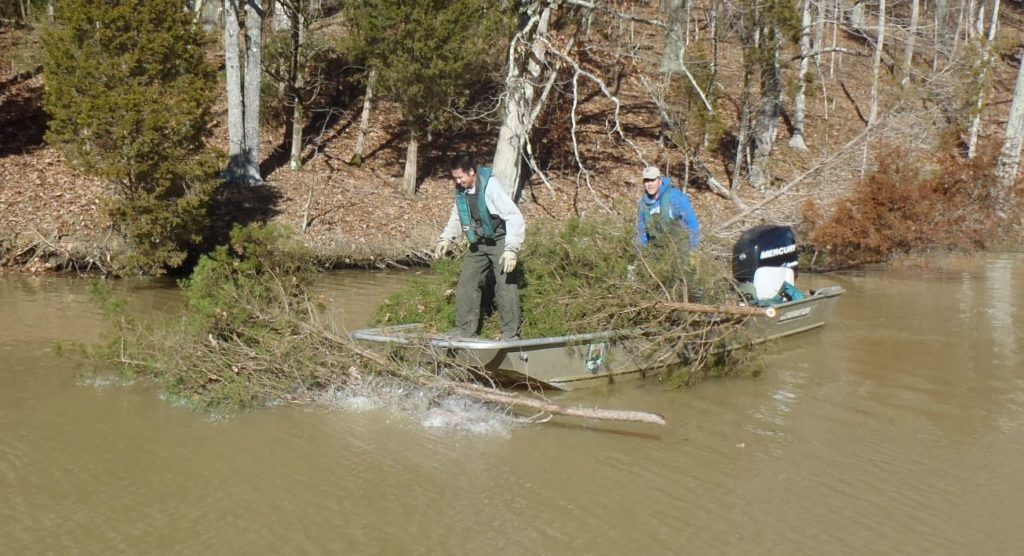 Use your old Christmas tree to make new fish habitat in lakes across Kentucky